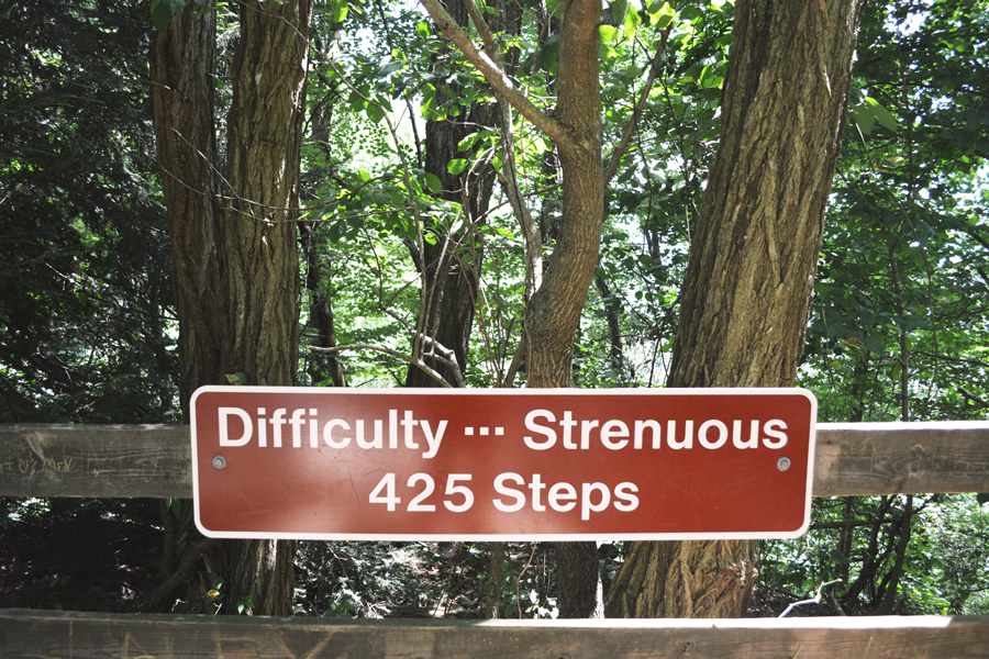 There are 425 steps leading up to Amicalola Falls making it a strenuous climb to the top of the falls.