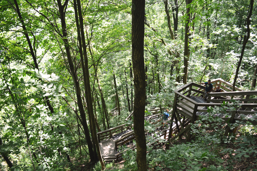 The labyrinth of stairs leading up to the top of the waterfall at Amicalola Falls State Park.