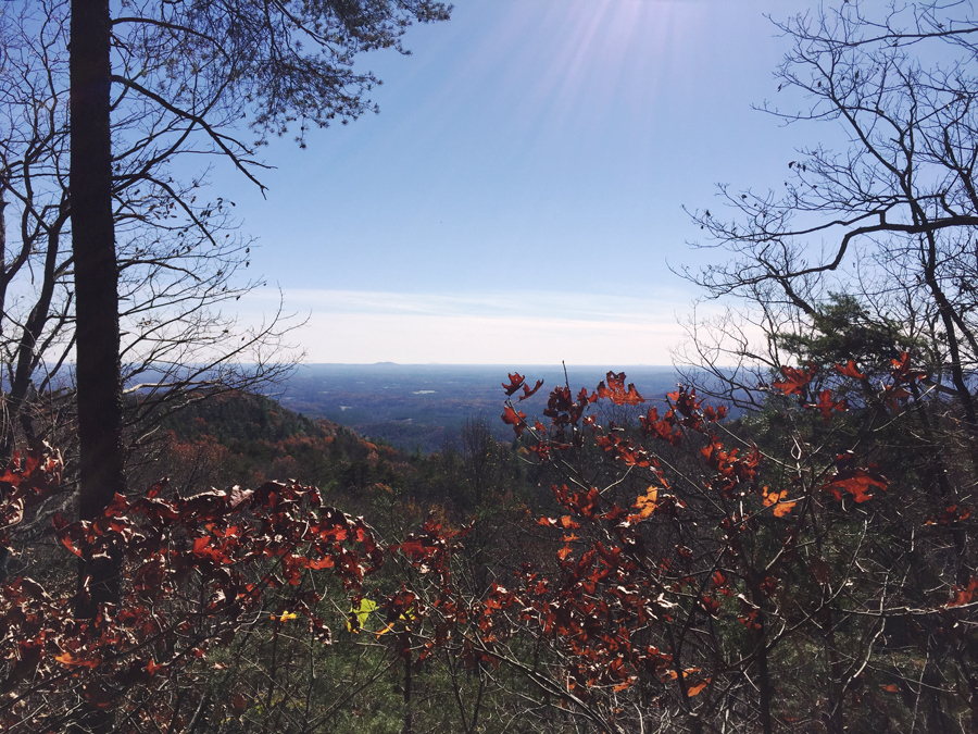 A view from Springer Mountain during a rest stop on the Appalachian approach trail.