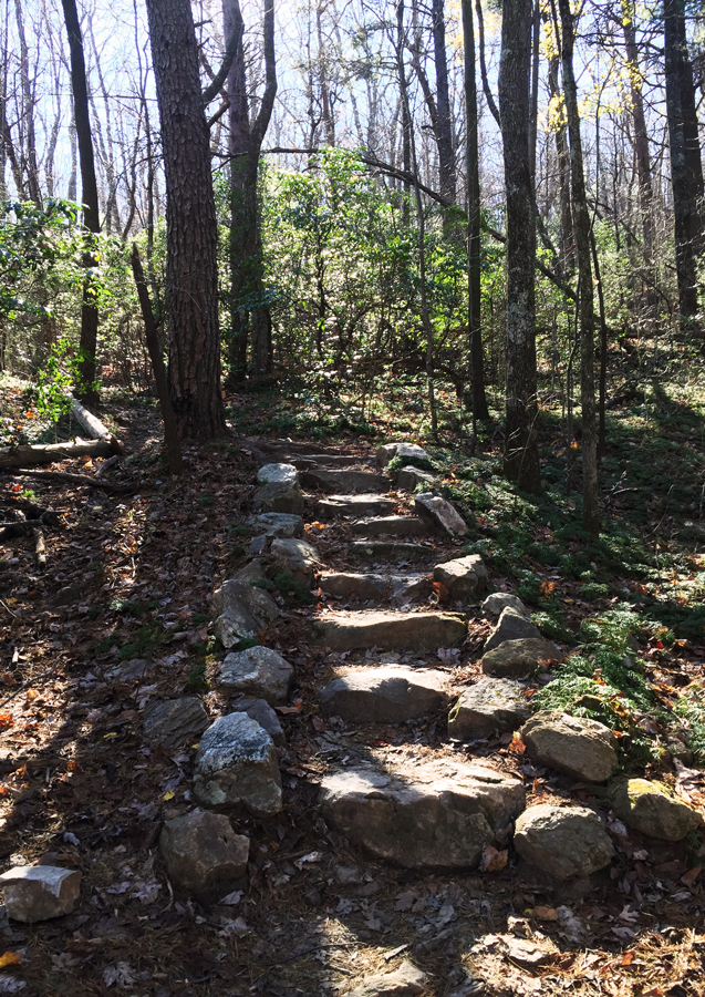 A well constructed set of stairs along the trail to Springer Mountain.