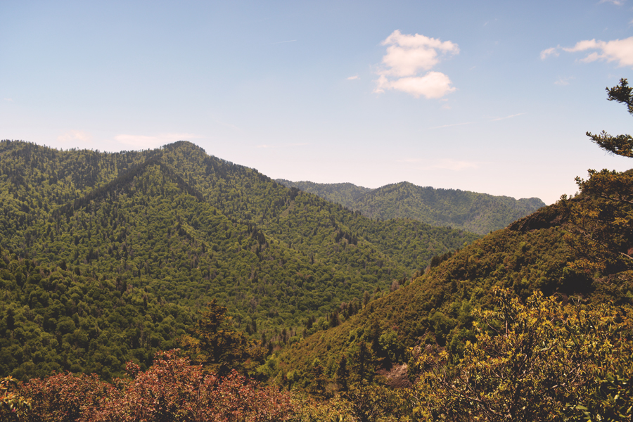 The Great Smoky Mountains are a rolling, gentle mountain range covered in green during the summer months.