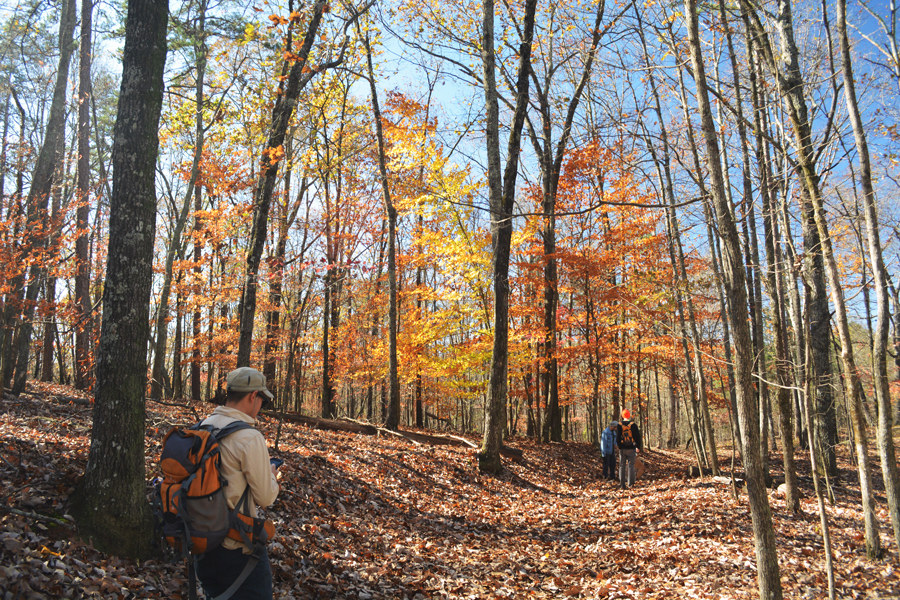 Kevin Banogon hikes the trails at Sweetwater Creek State Park during a beautifully colorful fall.