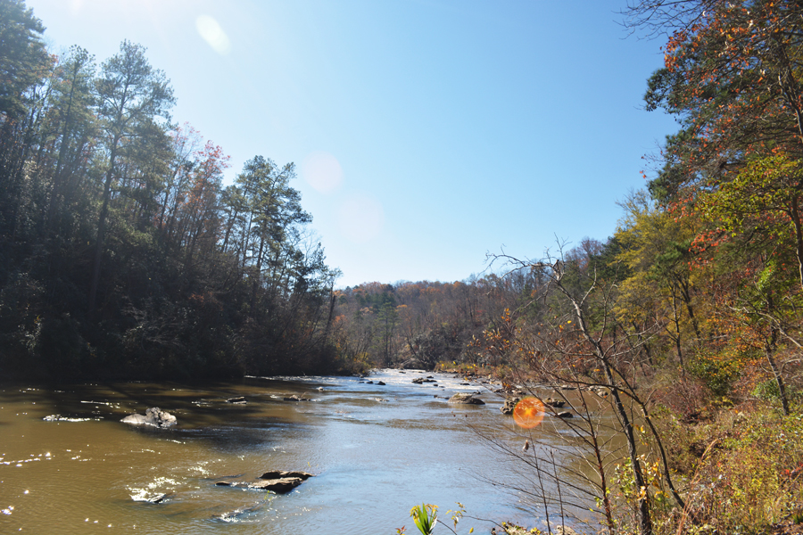 The wide expanse of Sweetwater Creek running through the heart of the state park.