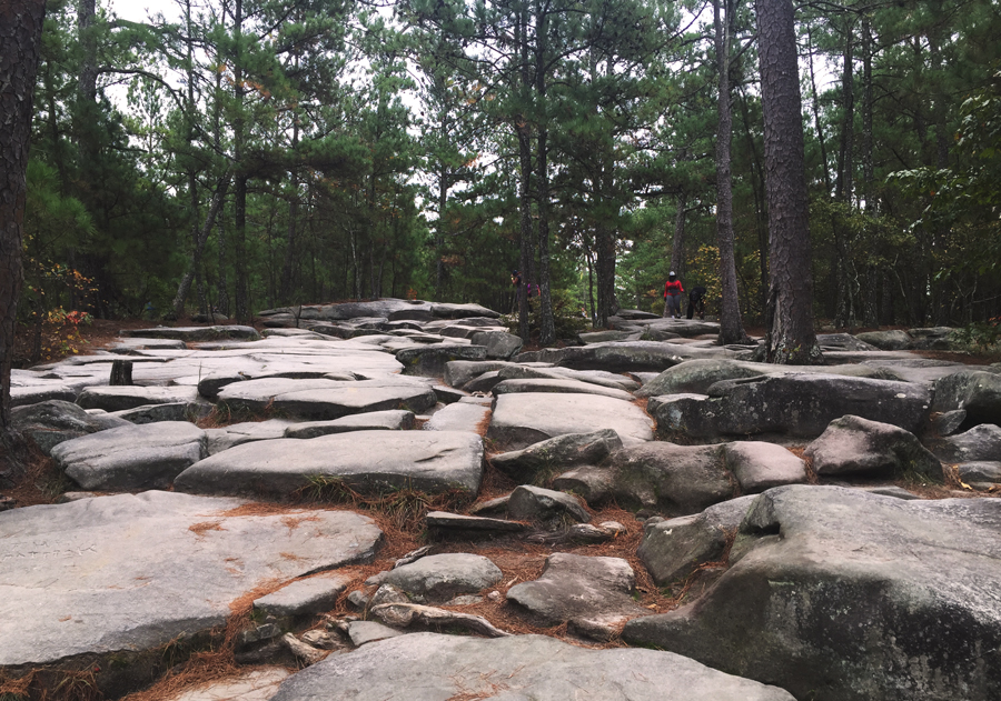 The uneven granite rocks on the hike up to the top of Stone Mountain.
