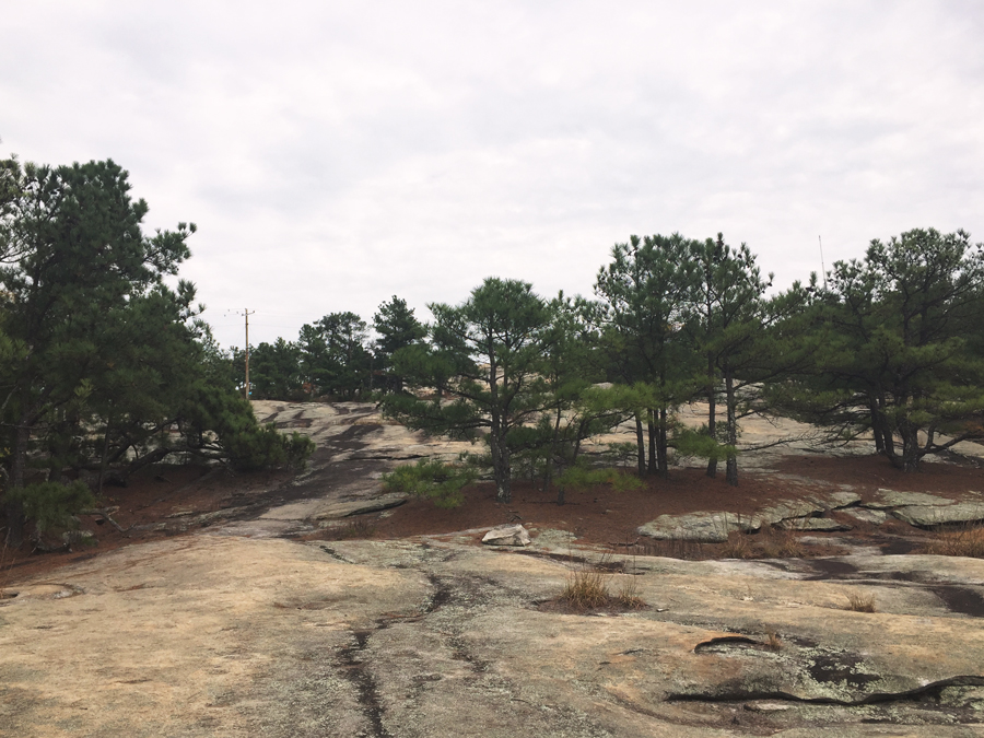 The sparse tree coverage on the top of Stone Mountain is beautiful in the summer.