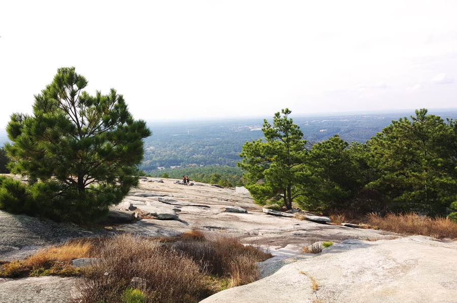 A beautiful view off the top of Stone Mountain through the trees.