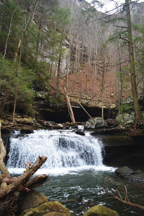 Along the Sitton Gulch Trail into Cloudland Canyon there are plenty of beautiful waterfalls to be seen.